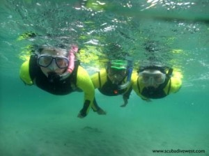 Discover_Snorkelingsmall